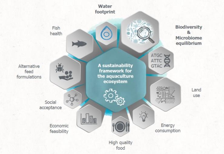 Il microbioma acquatico e acquacoltura: quando l'invisibile fa la differenza