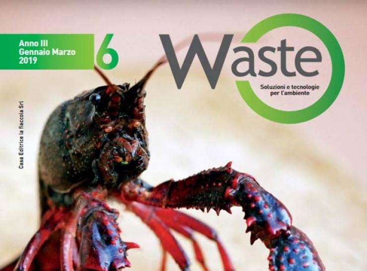 SUSHIN con il Gambero Rosso della Lousiana in copertina su WASTE